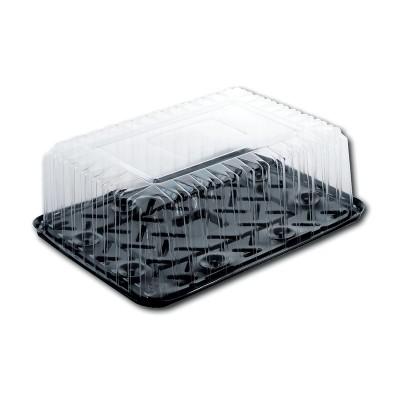 Pastripac Plastic Pastry Black Base 350x250x80mm + Lid | 50pcs