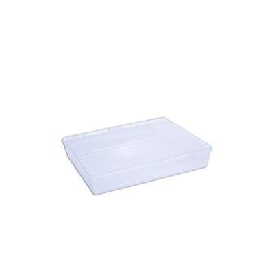Cristalpac Clear Rectangular Plastic Box (Cap:0.5kg) - PS | 170pcs