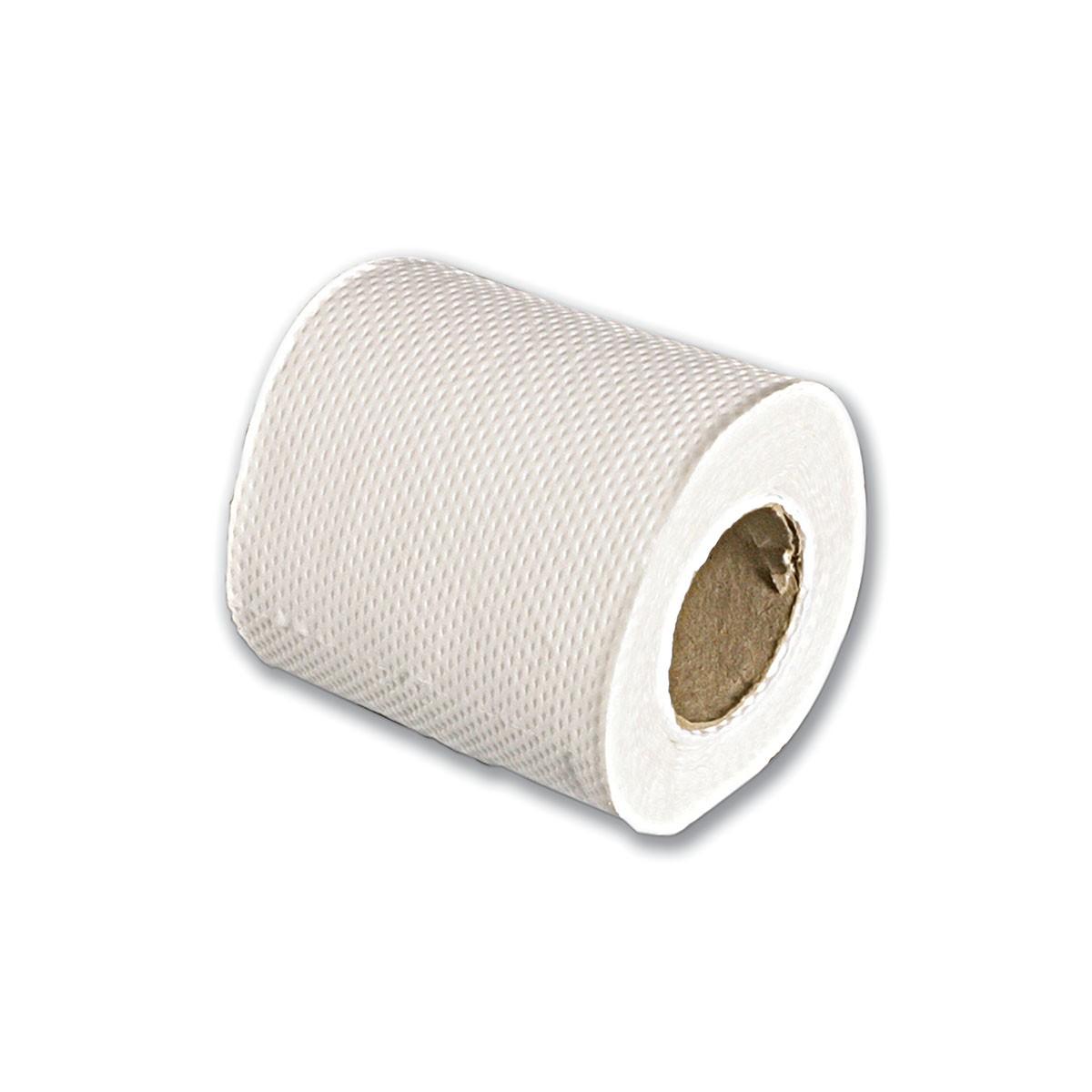 2-Ply Toilet Paper Roll (100shts) - White   10rlsx10pkts