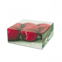 Cardboard Cake Box 14x18x6cm - Summer Breeze | 50pcs