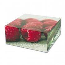 Cardboard Cake Box 18x18x8cm - Summer Breeze | 50pcs