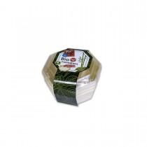Fun® Octagonal Wooden Cont. ⌀13x4cm w/ Lid | 4pcsx12pkts