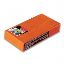 Fun® 2-Ply Napkin 25x25cm - Citrus | 100pcsx38pkts