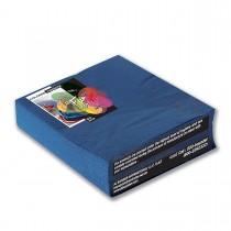 Fun® 2-Ply Napkin 40x40cm - Blue   50pcsx20pkts