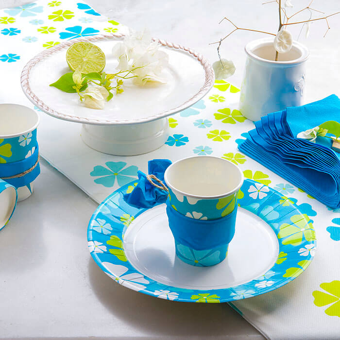 Coloured cups and Plates